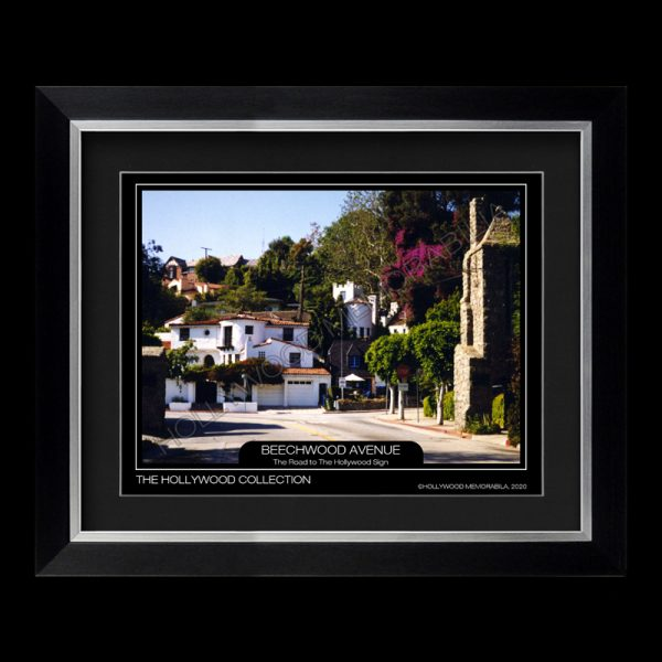 hollywood hills photograph
